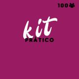 orçamento de kit festa para 100 pessoas Belenzinho